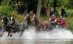 Georg von Stein im Wasserhindernis in Donaueschingen. Foto:  www.sportfotos-lafrentz.de