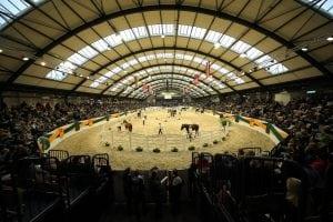 Vier Tage sind die Holstenhallen in Neumünster Bühne für Trakehner Hengste, Stuten, Fohlen und Reitpferde (Foto: Stefan Lafrentz)