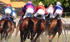 Pferderennen werden in Deutschland immer beliebter. (Foto: pixabay.com)