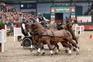 The 1st place for Boyd Exell (AUS) and his Four-in-Hand team in the FEI World Cup Driving qualification, Leipzig - Partner Pferd 2017 (Photo: FEI/Stefan Lafrentz)