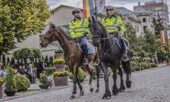 Symbolbild berittene Polizei. (Foto: pixybay.com)