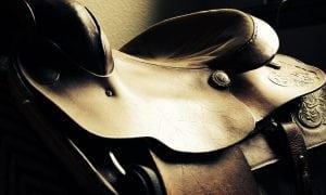 Sattel (Foto:pixabay)