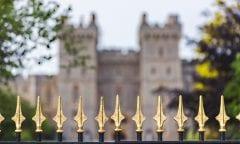 Symbolbild Royal (Foto:unsplash)