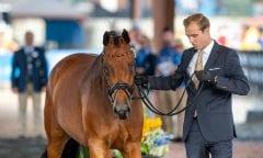 Sönke Rothenberger und Cosmo 2018 beim Vet Check der FEI World Equestrian Games™. Foto © www.sportfotos-lafrentz.de/Stefan Lafrentz