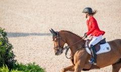 BLUM Simone (GER), DSP Alice Tryon - FEI World Equestrian Games™ 2018 2. Qualifikation Teamwertung 1. Runde 20. September 2018 © www.sportfotos-lafrentz.de/Stefan Lafrentz