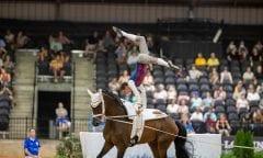 BRÜSEWITZ Thomas (GER), Danny Boy Old Tryon - FEI World Equestrian Games™ 2018 © www.sportfotos-lafrentz.de/Stefan Lafrentz