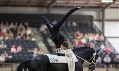 Symbolbild (HEILAND Jannik (GER), Dark Beluga Tryon - FEI World Equestrian Games™ 2018 Finale Voltigieren Kür/Freestyle Herren 2. Runde Einzelentscheidung 22. September 2018 © www.sportfotos-lafrentz.de/Stefan Lafrentz)