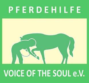 voice of the soul e.v.
