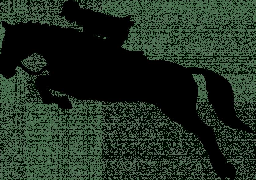 Springen Symbolbild (Foto: Pixabay)