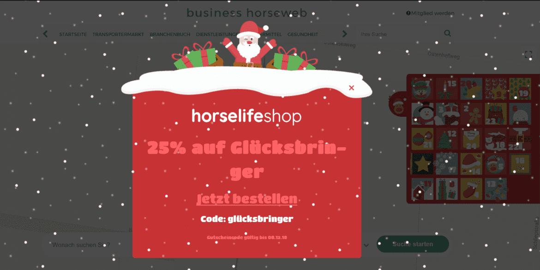 Werbebild Adventskalender business.horseweb