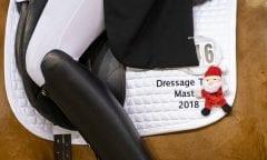 ALLESCHER Hannah (GER), Duke of Fire Frankfurt - Festhallen Reitturnier 2018 DTM Dressage Team Masters für Ponyreiter, Junioren und Junge Reiter 13. Dezember 2018 © www.sportfotos-lafrentz.de/Stefan Lafrentz