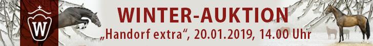 Winter-Auktion Handorf - 2019