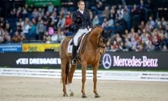 WANDRES Frederic (GER), Duke of Britain Stuttgart - German Masters 2018 Grand Prix Kür/Freestyle FEI Dressage World Cup 2018/2019 17. November 2018 © www.sportfotos-lafrentz.de/Stefan Lafrentz