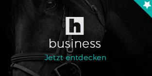 horseweb business