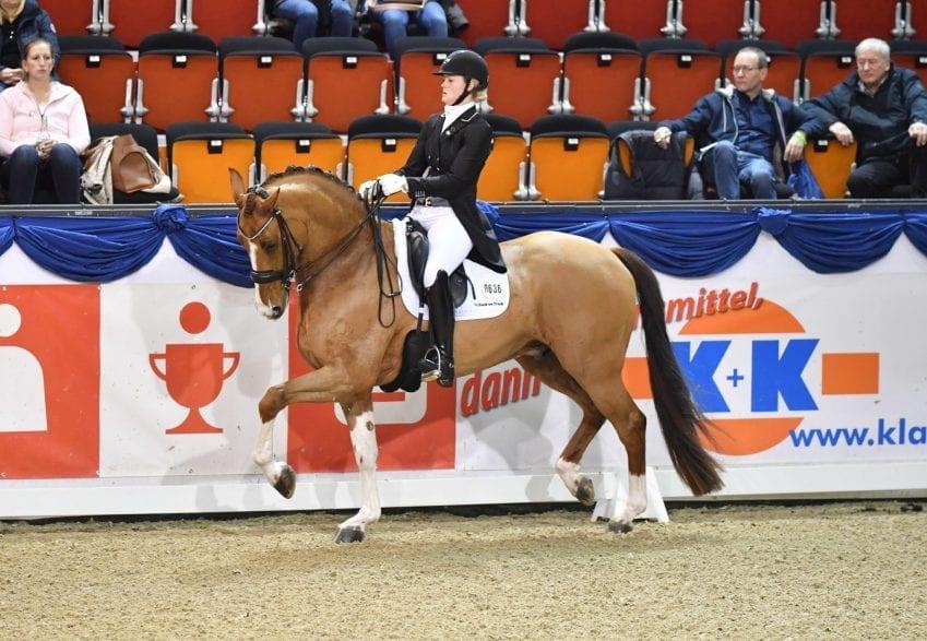 Malin Wahlberg-Nilsson und Eddieni gewannen den LVM-Grand Prix Special. (Foto: Fotodesign Feldhaus)