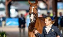 WERTH Isabell (GER), Bella Rose Tryon - FEI World Equestrian Games™ 2018 Vet-Check für die Dressurpferde 11. September 2018 © www.sportfotos-lafrentz.de/Stefan Lafrentz