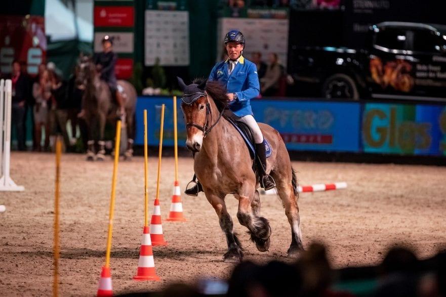 AHLMANN Christian (GER) Leipzig - Partner Pferd 2019 Sparkasse Sport-Gala Reiterspiel Working Equitation 18. Januar 2019 © www.sportfotos-lafrentz.de/Stefan Lafrentz