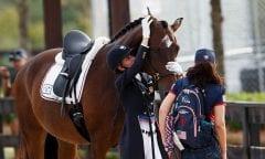 Graves Laura, USA, Verdades Tryon - FEI World Equestrian Games™ 2018 Impressionen Abreiteplatz Grand Prix Special Einzelentscheidung 14. September 2018 © www.sportfotos-lafrentz.de/Sharon Vandeput