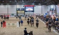 Partner Pferd: Einzigartige Mischung aus Spitzensport, Erlebnis und umfassender Ausstellung