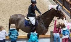 Foto: Leipziger Messe / Tom Schulze.Auf der PARTNER PFERD kommen schon die jüngsten Pferdefans ihren Lieblingstieren ganz nah.