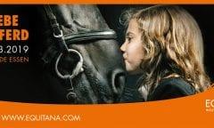 Heute Horsemanship-Day