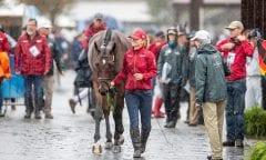 KRJEWSKI Julia (GER), Chipmunk FRH Tryon - FEI World Equestrian Games™ 2018 Vielseitigkeit Verfassungsprüfung 16. September 2018 © www.sportfotos-lafrentz.de/Stefan Lafrentz