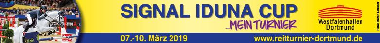 Signal Iduna Cup - 2019