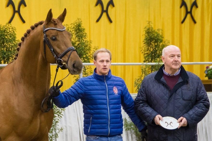 Destacado wurde mit dem Weltmeyer-Preis ausgezeichnet. Sein Züchter Heinrich Gießelmann (rechts) nahm den Ehrenpreis entgegen, Matthias Alexander Rath präsentierte den Vizeweltmeister der fünfjährigen Dressurpferde in der Niedersachsenhalle. (Foto: Hannoveraner Verband)