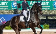 Kasey Perry-Glass and Goerklintgaards Dublet in their winning ride in the FEI Grand Prix CDI-W, presented by Helgstrand Dressage. ©SusanStickle.com