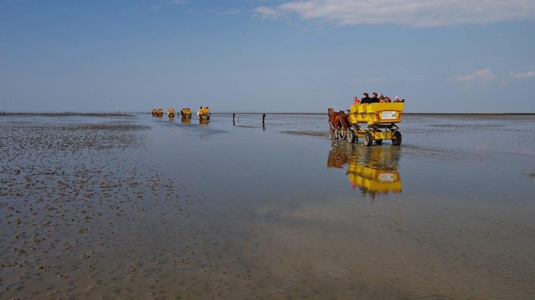 Kutschfahrt durchs Wattenmeer (Pixabay)