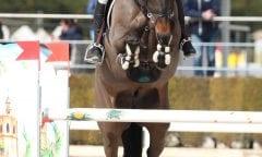 Carlos Lopez Lizarazo und sein WM-Pferd Admara sicherten sich in der Master Tour einen Sieg. (Foto: ACP Pantel)