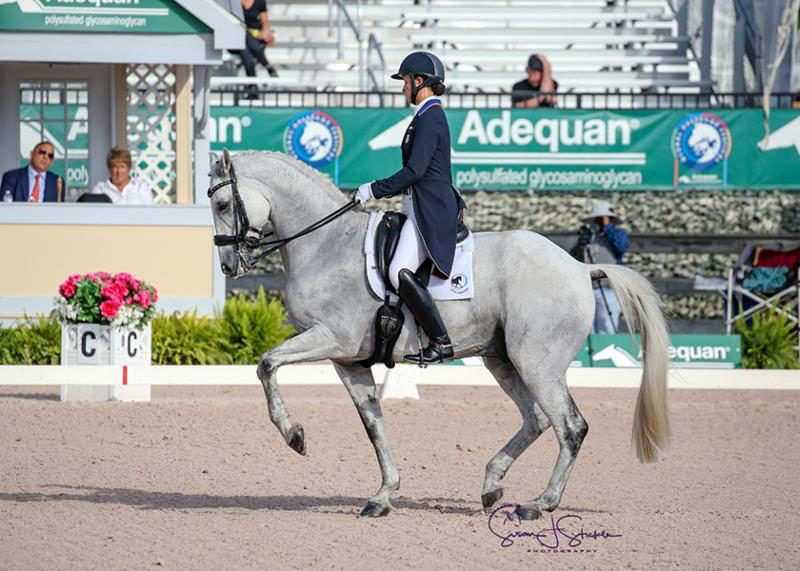 Adrienne Lyle and Harmony's Duval in their winning test. ©SusanStickle.com.