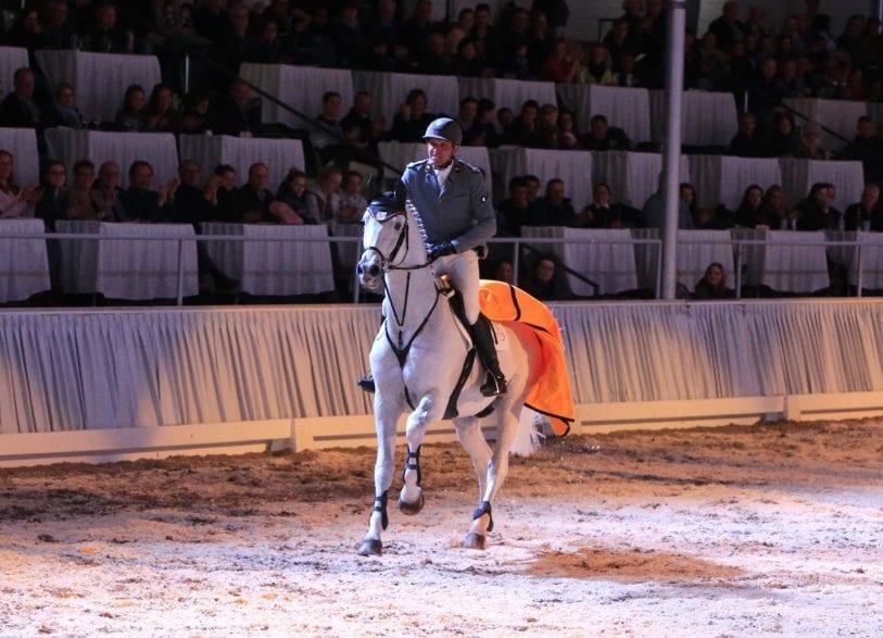 Heiko Tietze stellten den Celler Landbeschäler Grey Top in der Niedersachsenhalle vor. Foto: Hannoveraner Verband, Tammo Ernst.
