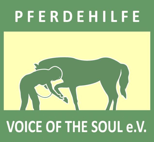 Voice of the Soul: Hilfe für die Pferde an den Pyramiden