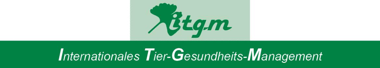 ITGM – SEMINAR-/WEBINARÜBERSICHT
