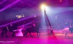 Ausschnitt aus der Abendshow bei der NORDPFERD (C) Mireya von Rantzau