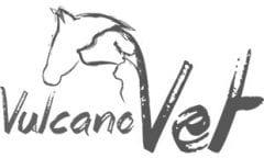 VucanoVet Eis and den heißen Tagen für's Pferd