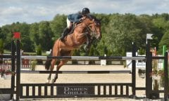 Nick Dello Joio jumps the Darien Grille jump at the 2018 Ox Ridge Charity Horse Show. (Photo: Andrew Ryback Photography)
