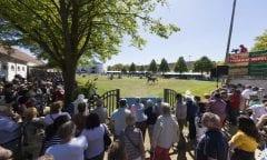 Das Pferdefestival Redefin bietet einen Bewegtbildservice für Medien. Das internationale Turnier ist Anziehungspunkt für Teilnehmer aus 15 Nationen. (Foto: Hellmann)