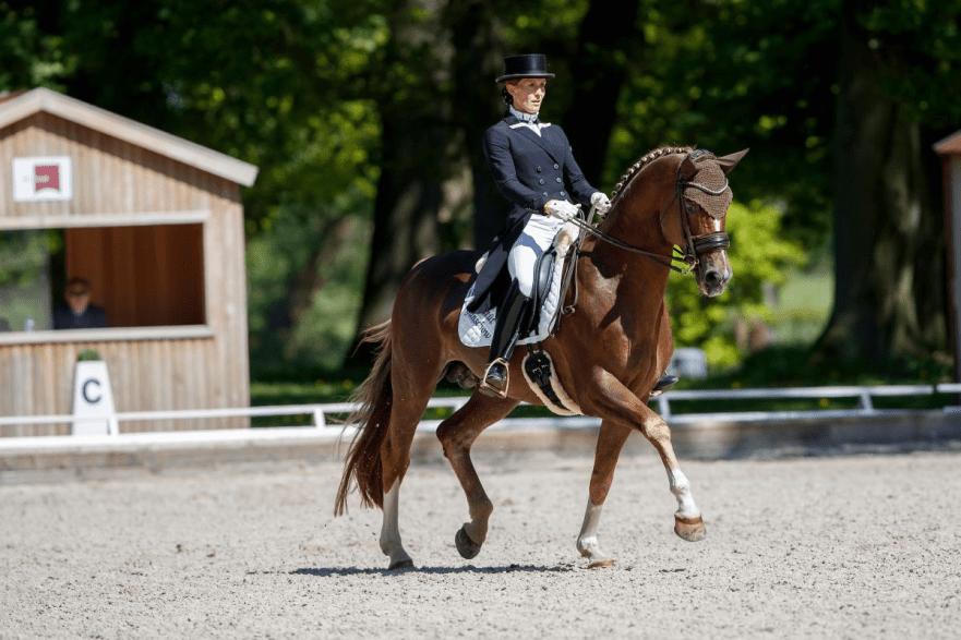 Der NÜRNBERGER BURG-POKAL entfaltet große Anziehungskraft beim Pferdefestival Redefin - hier Libuse Mencke mit Glücksruf II vom Gestüt Ganschow. (Foto: Stefan Lafrentz)