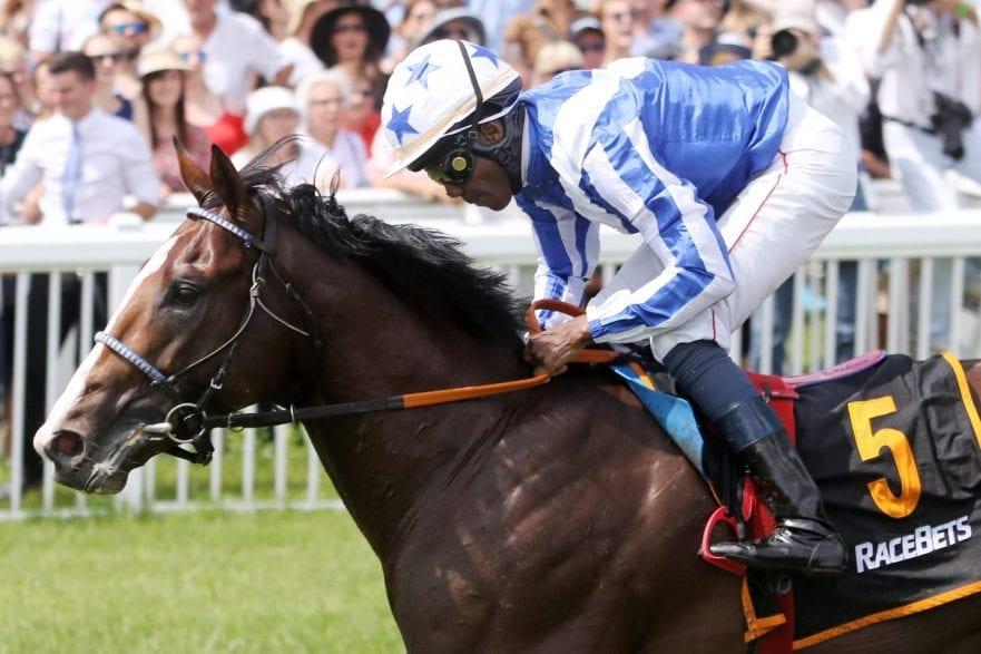 Royal Youmzain kehrt als Sieger des Ittlinger Derby Trials für den pferdewetten.de - Großer Hansa Preis mit Eduardo Pedroza nach Hamburg zurück. (Foto: Frank Sorge)