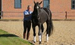 Thomsen, Morten Bodenarbeit mit Morten Thomsen © www.sportfotos-lafrentz.de/Stefan Lafrentz