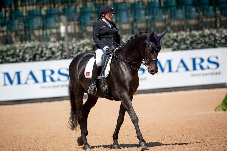 Philipp Elke, GER, Fuerst Sinclair Tryon - FEI World Equestrian Games™ 2018 Para-Dressur Grade Einzelentscheidung 19. September 2018 © www.sportfotos-lafrentz.de/Sharon Vandeput