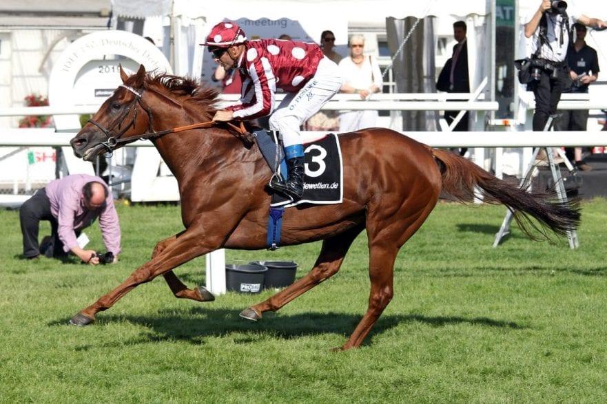 French King gewinnt den pferdewetten.de - Großen Hansa-Preis (Foto: Galoppfoto.de)