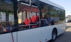 Ein Wallach sprang in die Scheibe dieses Busses. (Quelle: Polizeiinspektion Goslar)