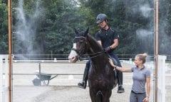 Pferdekühlung à la Cappeln (Foto:Michael Rzepa)