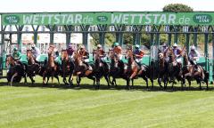 Pferde und Jockeys beim Start aus der neuen Startmaschine (Foto: Galoppfoto.de)