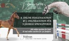8. Online Fohlenauktion & 8. Onlineauktion für 3-jährige Springpferde