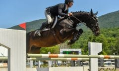 Kevin McCarthy swept the top two spots in the ,000 Manchester Designer Outlets Welcome Stake, presented by Theory, on Thursday, August 1, at the Vermont Summer Festival, earning the win aboard Easton. Photo by Andrew Ryback Photography