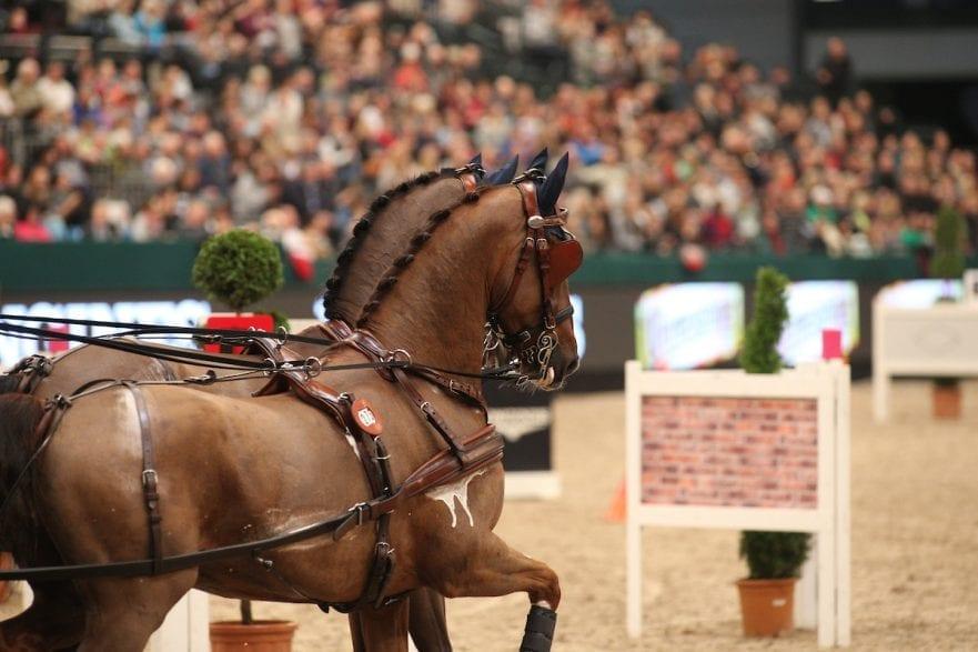 Symbolbild © www.sportfotos-lafrentz.de / Stefan Lafrentz